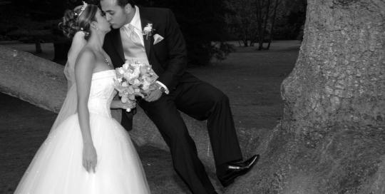 Wedding-DayStanly-Park